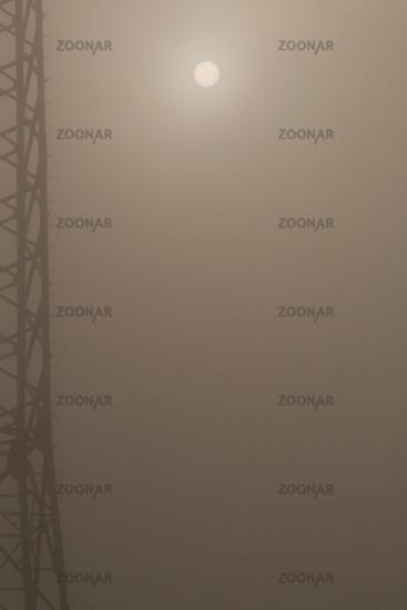 Power pole in fog