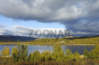 autumn landscape, herbstlandschaft, fokstumyra, oppland, norwegen, norway, nordeuropa, north europe,