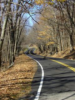 Straße im Herbst, USA