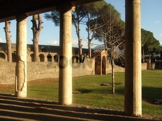 Das Gras wächst über Pompeji
