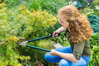 Young dutch woman pruning plant in garden