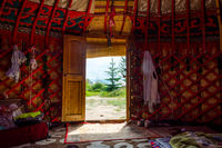 View from the yurt to the outside