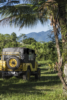 4x4 offroader travels deep into the rain forest in Paraty National Park, Brazil