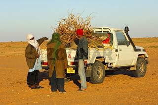 Beschaffung von Feuerholz, Sahara