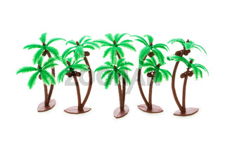 Figure of palm tree isolated on white
