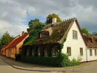 Cozy european thatched roof cottage in a street