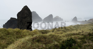 Misty Foggy Beach Pacific Ocean West Coast USA