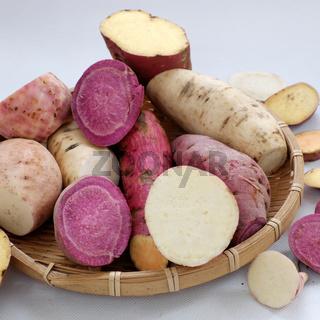 Diversity sweet potato on white background