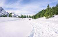 Fresh road through snow in mountains