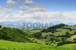 Typical landscape in Marche