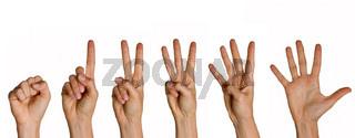 Zählende Finger: von null bis sechs
