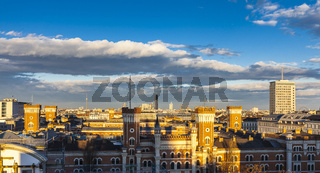 Vienna Skyline with many landmarks like the Towers Danube, DC, Ring tower and the Riesenrad