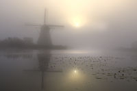 Historic windmill with fog, UNESCO World Heritage Site, Kinderdijk, South Holland, Netherlands, Euro