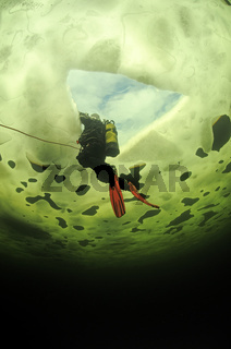 Eistauchen, ice diving