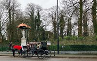 Horse carriage in the streets of Killarney