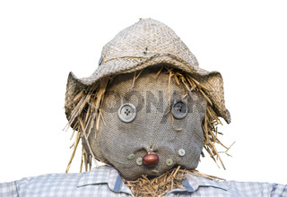 Isolated Scarecrow Head