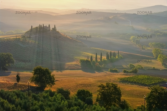 Landscape in Tuscany in the morning - landscape in Tuscany, morning in autumn