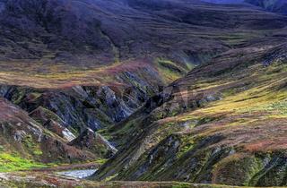 Alaskakette und herbstliche Tundra / Denali Nationalpark  -  Alaska