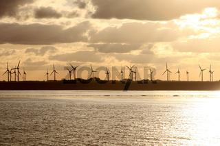 Windräder im Sonnenaufgang am Meer