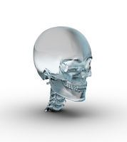 Male skull made of frosted glass.