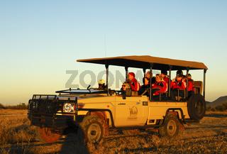 Touristen in einem Geländewagen auf einer Abendpirsch