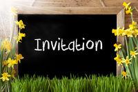 Sunny Spring Narcissus, Chalkboard, Text Invitation