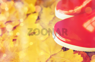 close up of red rubber boots on autumn leaves