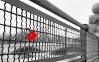 Love lock on bridge as symbol of infinite true love