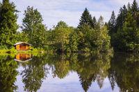 Moorweiher, bei Oberstdorf, Allgäu, Bayern, Deutschland, Europa