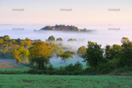 Burgund im Nebel  - Burgundy in morning mist, France