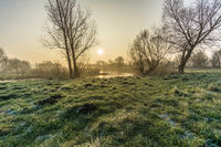 nature reserve in winter at sunrise with ice and frost