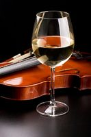 Violin and a glass of wine on the table