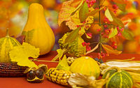Still life in autumn colors with corn, gourd, vine leaves, and other plant