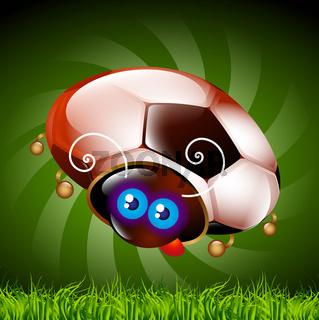 ladybug fan of football