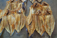 Drying Fisch at Seychelles
