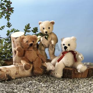 Teddy, lustig