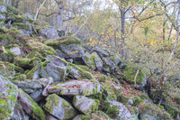 Legendary Chaos of rocks nearby Heidelberg, Germany
