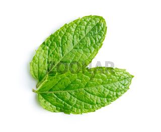 Green mint leaves.