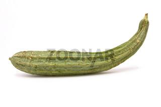 Luffa Squash