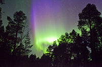 Green and purple Aurora Borealis in finnish Lapland