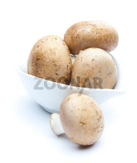 braune Champignons