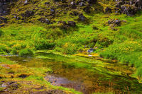The valley in the Park Landmannalaugar