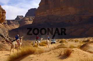 Verkehr in der Sahara