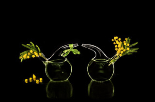 Two chemical flask with spring flowers