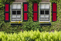 House with Red Shutters Giethoorn