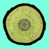 Cross section of tree stump isolated on blue background, vector Eps 10 illustration.