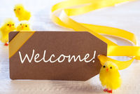 Easter Label, Chicks, Text Welcome