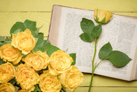 Yellow rose on an open old book