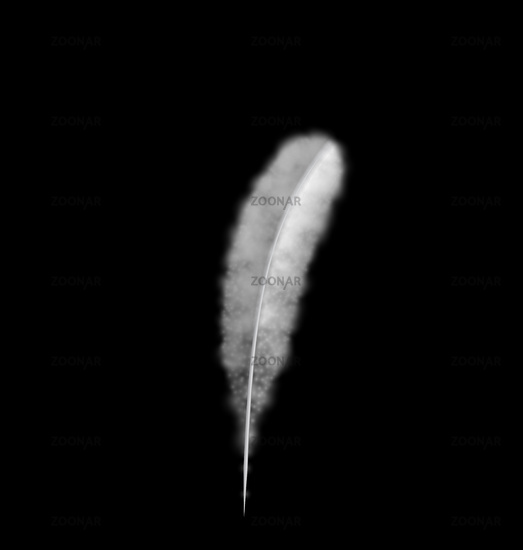 White Feather isolated on Black Background