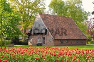 Historisches Bauernhaus uber Tulpen